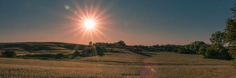 Fine art photography prints | Sunset on Iowa Field