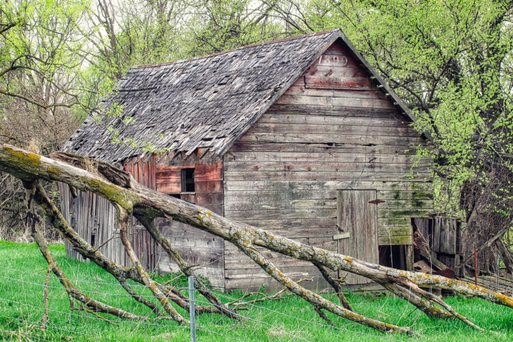 Fine art photography prints | 1899 Barn in the Woods