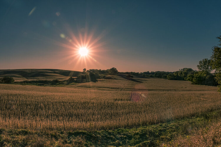 Fine art photography prints   Sunset on Iowa Field