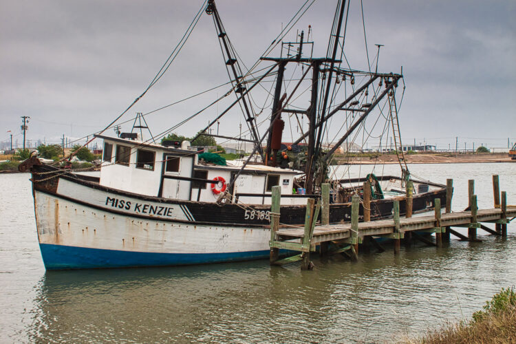 Fine art photography prints | Miss Kenzie at Freeport Texas