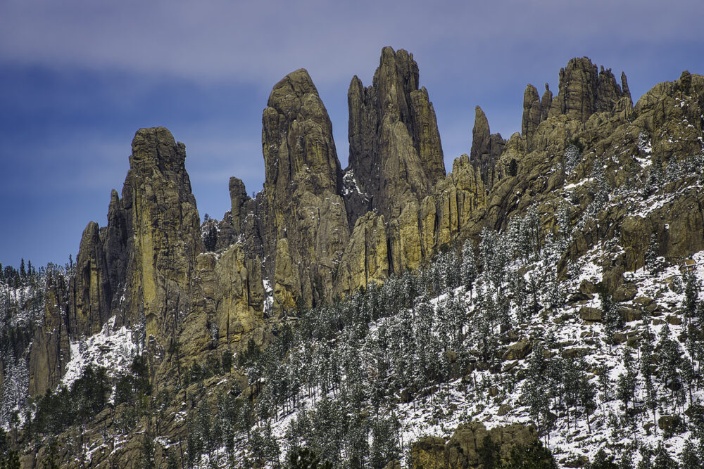 Fine art photography prints   Needles at Custer State Park