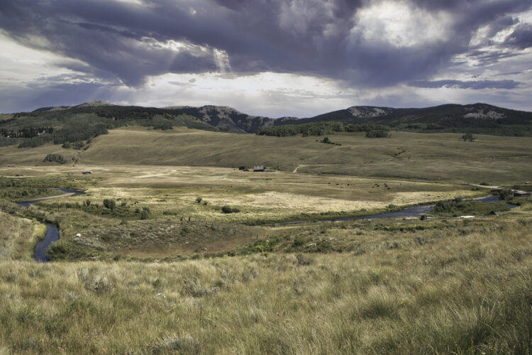 Fine art photography prints | Mountain Meadow Homestead